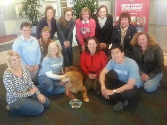 R Ann Johnson Golden Retriever Puppy Up Foundation | ...