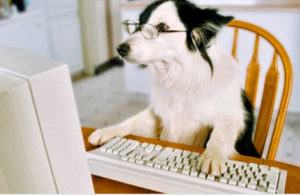 (Here a blogger employs his dog as his ghost writer.)