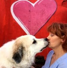 Show Your Love Puppy Up Kiss Cam Contest!