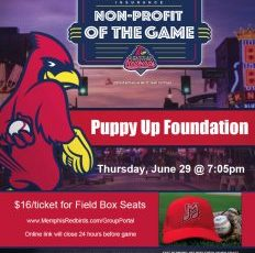 Puppy Up Night at the Memphis Redbirds Game