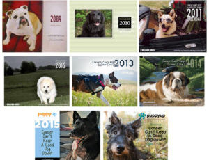 "It's here! The 9th Annual, 2017 ""Cancer Can't Keep a Good Dog Down"" Calendar contest has begun!"