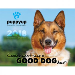 Puppy Up Foundation Puppyuporg Cancer Touches Everyone